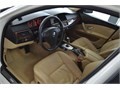 2010 520d Premium Dakato Deri Beyaz Bej Tr de Tek Hatasız Boyasız
