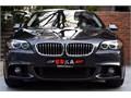 2014 BMW 5.20İ DIŞ M PAKET SUNROOF DERİ Bİ XENON BORUSN BOYASZ