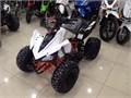 SEMSA'DAN KUBA PREDATOR 110 cc 4x2 ATV OFF-ROAD SPOR MODELİ